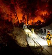 Debattörerna varnar för klimatförändringarnas direkta konsekvenser, så som skogsbränderna i Kalifornien. Noah Berger / TT NYHETSBYRÅN