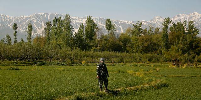 Indisk säkerhetsstyrka på ett fält i indiskkontrollerade Kashmir. Mukhtar Khan / TT NYHETSBYRÅN/ NTB Scanpix