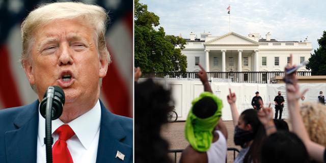 Donald Trump och bild från gårdagens protester vid Vita huset. TT