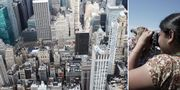 """""""Frihetsgudinnegrön"""" har blivit New Yorks signaturfärg och syns överallt i staden. Pixabay/Sam Chills"""