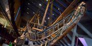 Arkivbild. Regalskeppet Vasa på Vasamuseet på Djurgården, Stockholm. Claudio Bresciani / TT / TT NYHETSBYRÅN