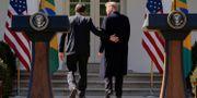 Bolsonaro och Trump. KEVIN LAMARQUE / TT NYHETSBYRÅN