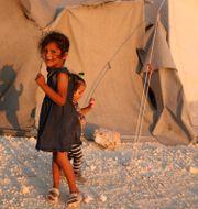 Flicka i Idlib. AAREF WATAD / AFP
