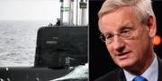 Arkivbild, Carl Bildt. TT