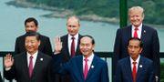 Xi Jinping, Vladimir Putin och Donald Trump på Apec-möte 2017.  Jorge Silva / TT NYHETSBYRÅN