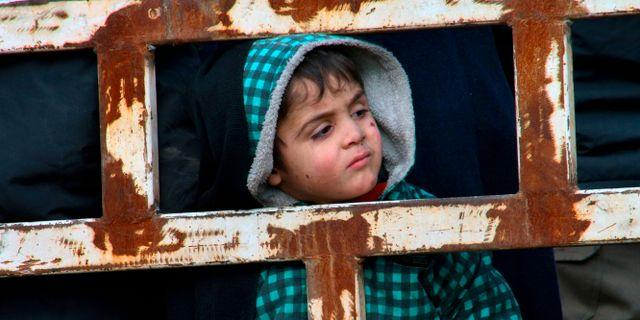 En pojke som evakuerats från östra Aleppo till de västra delarna. Uncredited / TT / NTB Scanpix