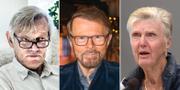 Göran Lambertz, Björn Ulvaeus och Barbro Westerholm (L) är tre av debattartikelns undertecknare.