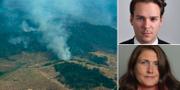 Brand i Amazonas. MP-politikerna Lorentz Tovatt och Janine Alm Ericson. TT