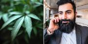 Cannabis/Hanif Bali (M). TT