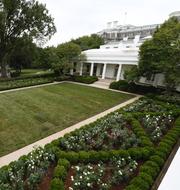 George W Bush och Mahmoud Abbas/Rosenträdgården efter att Melania Trump renoverade den 2020.  TT