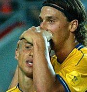 Larsson 2021 och Larsson och Ibrahimovic 2004.  TT