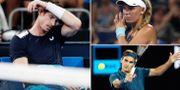 Andy Murray, Caroline Wozniacki och Roger Federer.  Bildbyrån.