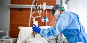 Bild från Papa Giovanni XXIII-sjukhuset i Bergamo tidigare i år. Claudio Furlan / TT NYHETSBYRÅN