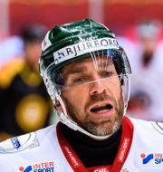 Frölundas Joel Lundqvist.  MAXIM THORE / BILDBYRÅN