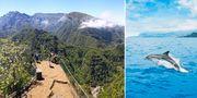 Lokalborna har blivit vana – det är sjätte året i rad den portugisiska ön kniper priset. Fotolia