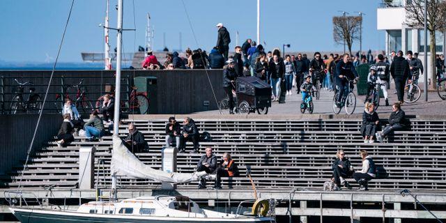 Västra hamnen i Malmö. Arkivbild. Johan Nilsson/TT / TT NYHETSBYRÅN