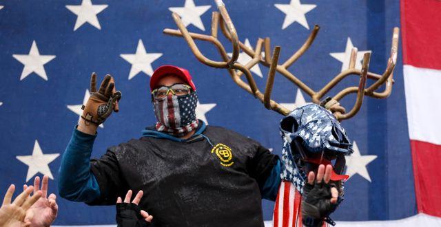 En medlem i Proud Boys under en demonstration mot det amerikanska valresultatet 14 november, 2020.  Brian Hayes / TT NYHETSBYRÅN