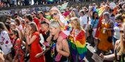 Prideparaden i Stockholm i somras. Stina Stjernkvist/TT / TT NYHETSBYRÅN