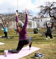 Yoga utomhus. Arkivbild. Henrik Montgomery/TT / TT NYHETSBYRÅN