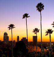 Illustrationsbild: Vy över Silicon Beach, södra Kalifornien.  Mark J. Terrill / TT NYHETSBYRÅN