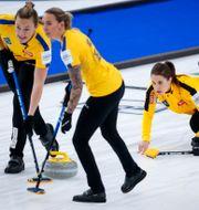 Det svenska laget under VM Jeff McIntosh / TT NYHETSBYRÅN