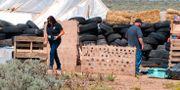 Den nedgångna egendomen i Taos County där barnen hittades. Morgan Lee / TT NYHETSBYRÅN