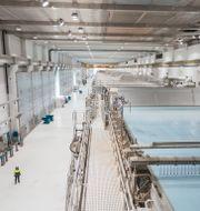 En av Billerud Korsnäs fabriker. Veronica Johansson/SvD/TT / TT NYHETSBYRÅN