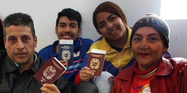 Flyktingar atervander till falluja