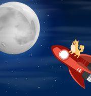 Meme: Dogecoin på väg mot månen. Shutterstock