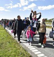 En stor grupp flyktingar och migranter anländer till Rødby på danska Lolland 2015. TT NYHETSBYRÅN