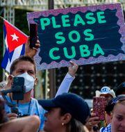 Stödprotester i Miami i slutet av juli. Pedro Portal / TT NYHETSBYRÅN