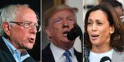 Bernie Sanders/Donald Trump/Kamala Harris.  TT.