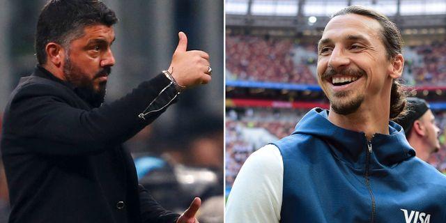 Gennaro Gattuso och Zlatan Ibrahimovic.  Bildbyrån.