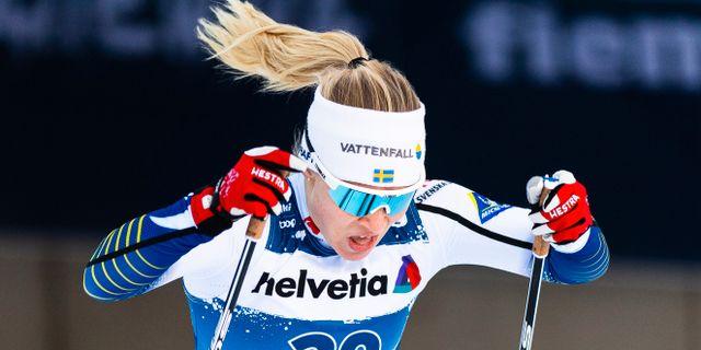 Jonna Sundling. Arkiv. MATHIAS BERGELD / BILDBYRÅN