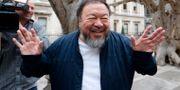 Ai Weiwei. Frank Augstein / TT NYHETSBYRÅN