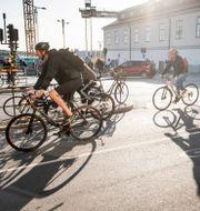 Arkivbild, cyklister i Stockholm. Magnus Hjalmarson Neideman/SvD/TT / TT NYHETSBYRÅN