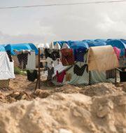 Arkivbild från al-Hol-lägret. Maya Alleruzzo / TT NYHETSBYRÅN