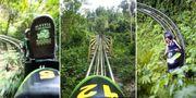 I djungelparken Magic Mountains i Ochos Rios kan du tetsa bobsleigh, som har blivit något av en nationalsport på Jamaica. Wikicommons