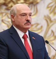 Aleksandr Lukasjenko Maxim Guchek / TT NYHETSBYRÅN