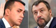 Luigi Di Maio/Matteo Salvini. TT