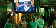 Robert Mugabe på tv. Ben Curtis / TT / NTB Scanpix