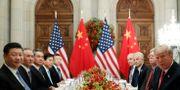 Donald Trump och Xi Jinping under middagen.  KEVIN LAMARQUE / TT NYHETSBYRÅN