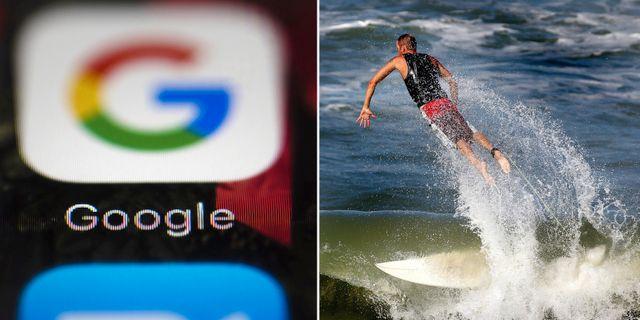 Google-app. Surfare på Bermuda. Arkivbilder. TT