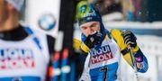 Sebastian Samuelsson. PETTER ARVIDSON / BILDBYRÅN