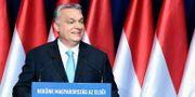 Orbán under sitt tal.  Szilard Koszticsak / TT NYHETSBYRÅN