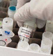 Novavax vaccin mot covid-19.  ANDREW CABALLERO-REYNOLDS / TT NYHETSBYRÅN