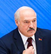 Aleksandr Lukasjenko.  Nikolay Petrov / TT NYHETSBYRÅN