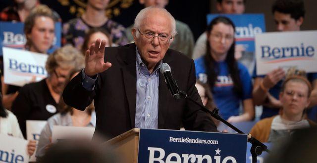 Bernie Sanders. Steven Senne / TT NYHETSBYRÅN