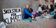 Greta Thunberg utanför riksdagen.  Jessica Gow/TT / TT NYHETSBYRÅN