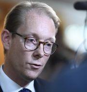 Tobias Billström, Moderaternas gruppledare.  Henrik Montgomery/TT / TT NYHETSBYRÅN